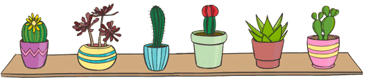 kaktus-sukkulent.ru
